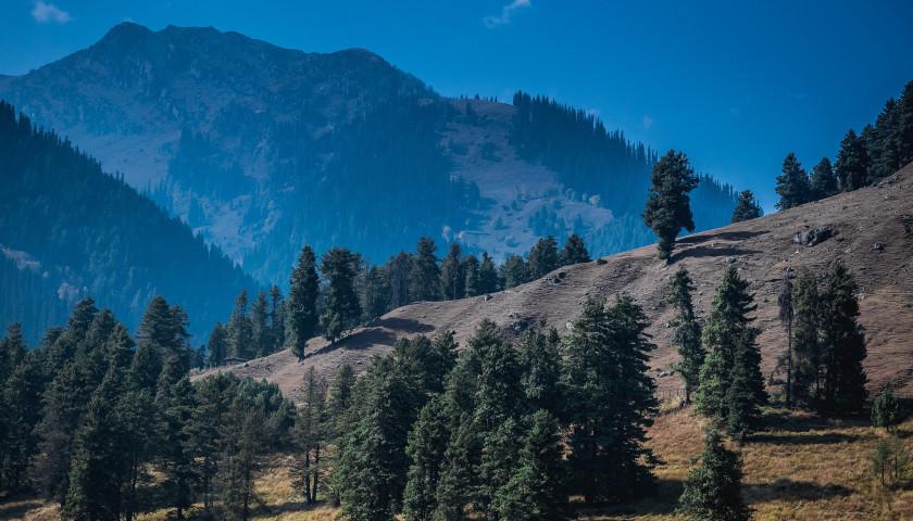 2020/05/AH-40731-Pahalgam-Kashmir-Tours.jpg